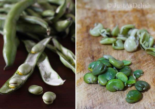Kacang Phool / Fava Bean / Ful Medames